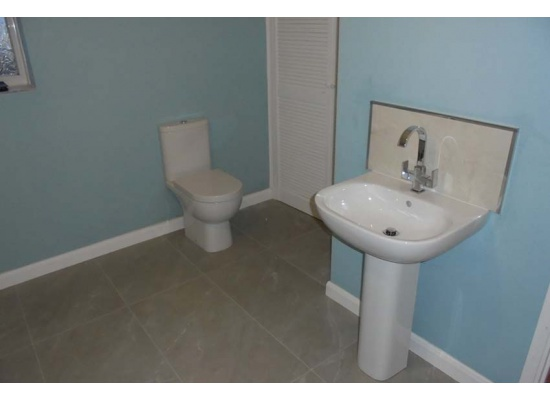 blue walls with toilet and sink units